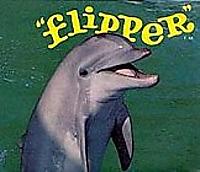 Flippertv1