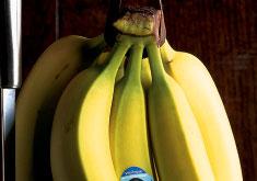 Fruitveg_bananas